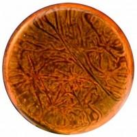 Керамическая плитка    Cevica 927568