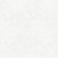 Керамогранит  матовый Meissen TY4R092D