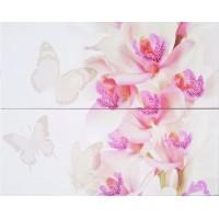 STGA363127000 Орхидея белая 40х50