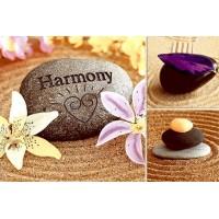 Коллекция Гармония