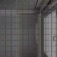 TES75213 Г25 зеркальная Графит 25х25/300x300 мм 30x30