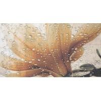 TES94923 Dec Ocean Crema A 32,5x60 32.5x60