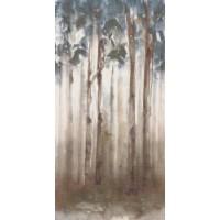Dream Woods 120x240