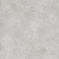 C226001141  On Light Grey Nature 59.6x59.6