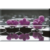 Composicion Wellness 02 Purple 30x45 (комплект 2шт)