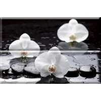 Composicion Wellness 02 White 30x45 (комплект 2шт)
