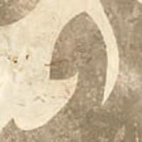 11481 T.CHLOE/P 5.5x5.5