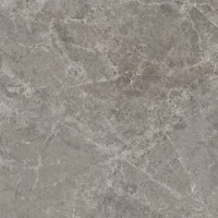 PGWTY35  TRILOGY SANDY GREY SOFT/RTT 60x60