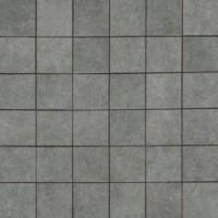 14461 Alsacia D.SELESTAT-N 29.9x29.9
