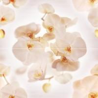 Керамическая плитка  с орхидеями Ceramica Classic P2D294