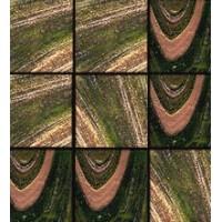 Brillante 236 31.6x31.6 (2x2)