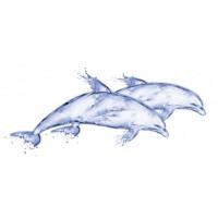 DB2G051D  DeepBlue Дельфин 20х44 20x44