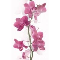 Керамическая плитка  с орхидеями Cerrol TES100074