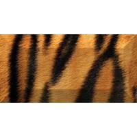 рельефный Africa br1020D210-1 20x10