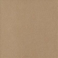 Керамогранит TES20596 Imola Ceramica (Италия)