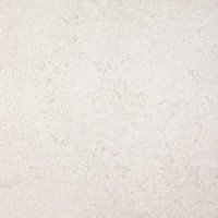 SG609200R Палатин серый обрезной 60*60