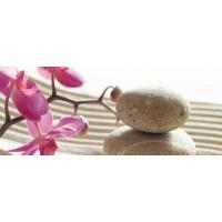Керамическая плитка  с орхидеями Cerrol TES100027