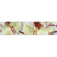 Керамическая плитка  с орхидеями Кировская керамика 275222