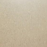 TES5253 PLX 721 песочныйx0.95 60x60