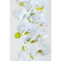 Керамическая плитка  с орхидеями Уралкерамика ВС7ФЕ001
