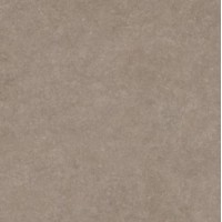 41248 Light Stone Taupe 60x60