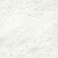 TES13909 Marmorex Carrara glossy 73x73