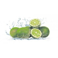 Lemon-1  Centro 20x50