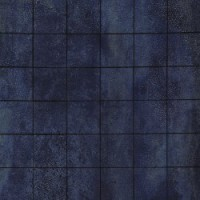 21332 D.BRAZEN NIGHT/5 30x30