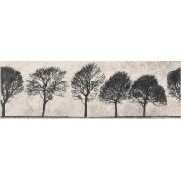 O-WIL-WID521-14 Willow Sky Деревья 29x89