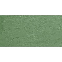 TES16798 Моноколор CF UF 007 зеленый структурированый SR 30x60