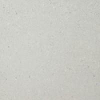 TES5254 PLX 726 светло-серыйx0.95 60x60