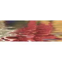 Керамическая плитка   Ceracasa 14109-11