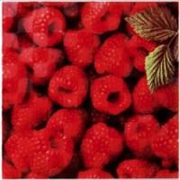 Orly Raspberry W 20x20