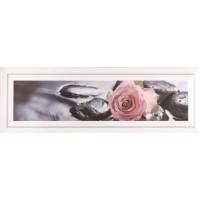 Florian Rose 10x30
