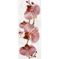 Керамическая плитка  с орхидеями Кировская керамика 377087