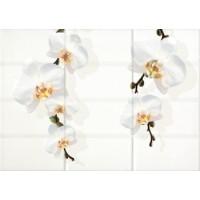 Керамическая плитка  с цветами Cersanit MY2M302D