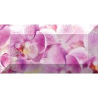 Керамическая плитка  с орхидеями Ceramica Classic br1020D190-1