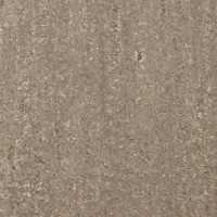 TES6219 STANLEY PW желто-коричневыйx0.95 60x60