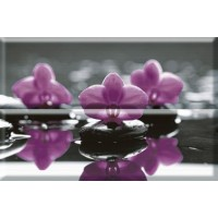 Composicion Wellness 01 Purple 30x45 (комплект 2шт)