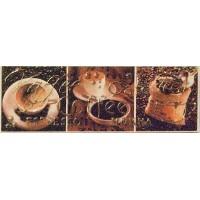 Nora Coffee B 22x7