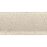SP4004/BTS Имбирь 20x11.2