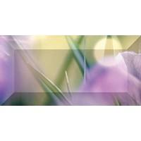 Керамическая плитка зелёнаяCeramica Classic br1020D286-1