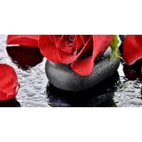 TES103085 Touch B красный, серый, чёрный 50x25 25x50