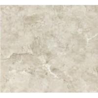 TES13982 Marble Light Gray 60x60