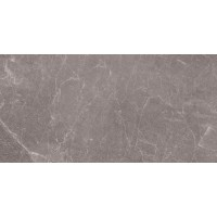 Exedra Tiles Silk Rain Grey 50x100