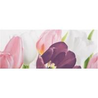 Tulip 1 PN 20x50