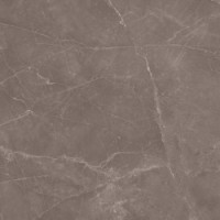 615.0014.0371 TORTORA POLISHED 59,2x59,2 59.2x59.2