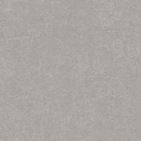TES12556 Aston-R Gris Antideslizante 59,3x59,3 59.3x59.3