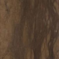 JACANA waxed 30.5x30.5