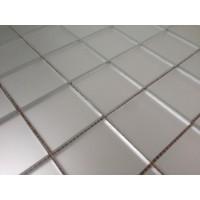 TES62378 M50 зеркальная на сетке (5x5) 31x31